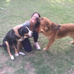 rhiannon-dogs